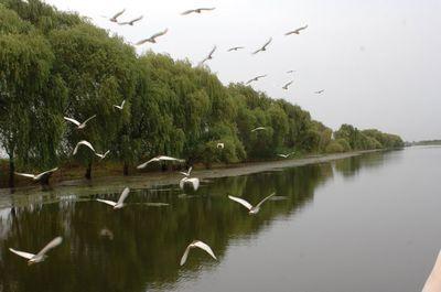 安徽人文自然景观推荐:淮南焦岗湖旅游风景区