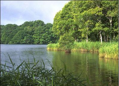安徽人文自然景觀推薦:淮南焦崗湖旅游風景區