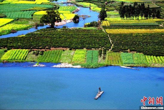 四、杭州太子湾公园   很多喜欢郁金香的朋友都不远万里到荷兰观赏,然而,在中国也能欣赏到绚丽的郁金香,最为出名的就是杭州太子湾公园。每年的3月20日-4月10日,郁金香、洋水仙、樱花齐开放,草坪上蔓延着数百万株色彩各异的花朵。。2012年3月23日,杭州太子湾公园内的郁金香随着天气回暖已基本开放,许多游客和市民趁着天气转晴,前来先睹为快。    五、河南洛阳   洛阳牡丹花雍容华贵,艳而不俗,柔而不媚,被誉为国色天香。花开时节,洛阳城花海人潮,竞睹牡丹倩姿芳容。图为洛阳牡丹花会-洛阳牡丹节,洛阳市各个牡