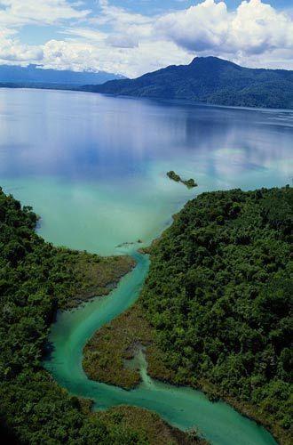亚马逊河口