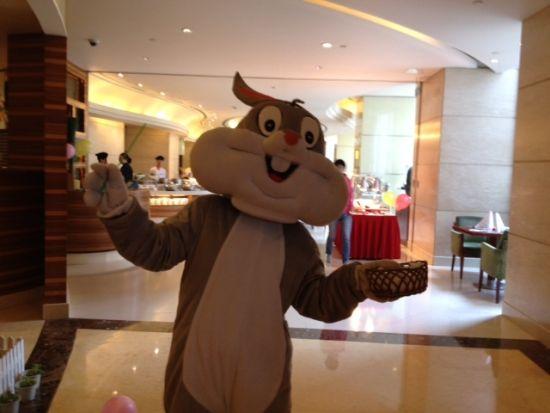 合肥元一希尔顿酒店--4月8日复活节情趣童话世亲子高新四路西安v情趣图片