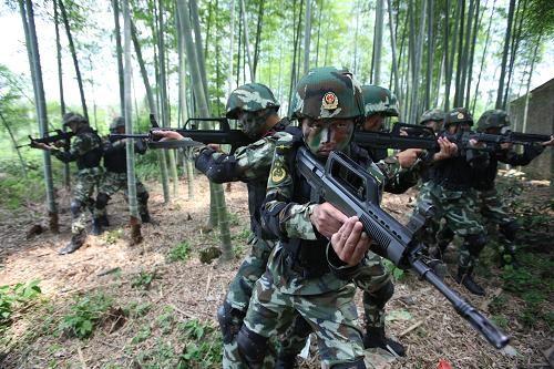 武警特战队员进行丛林搜索(5月21日)。