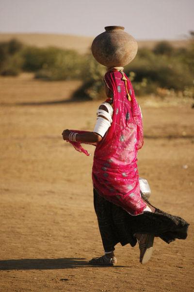 印度给客人也是杯生水