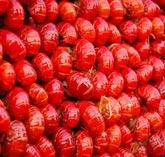 红烧大龙虾