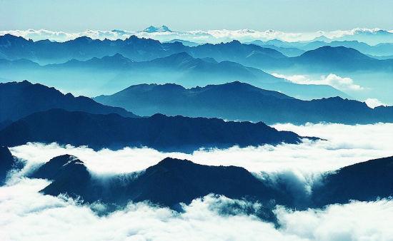 黄山:葱郁的林木撑起一把把遮阳伞