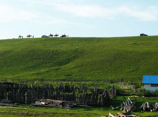 马队行走山坡绿色的轮廓线上 图:伊夫