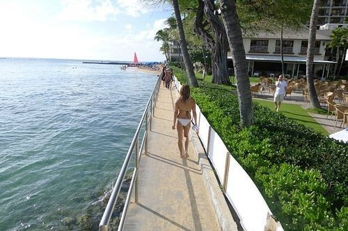 夏威夷怎能缺了美人