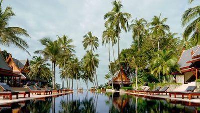这座度假村位于一片椰子林中