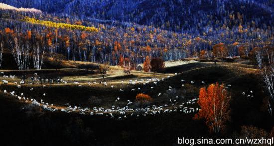 秋日的坝上,五彩缤纷 摄影:我最凶悍