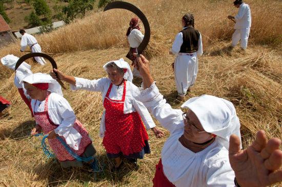 2012年7月14日,波斯尼亚的妇女们以唱歌的方式庆祝收获季节的开始