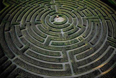 世界上最大的植物迷宫
