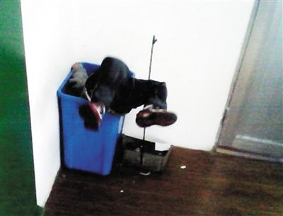 幼童被扔进垃圾桶的照片