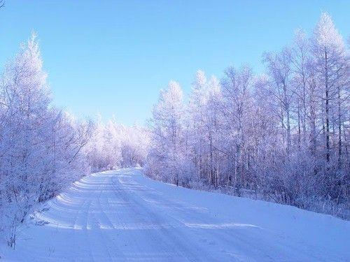 大兴安岭冬景