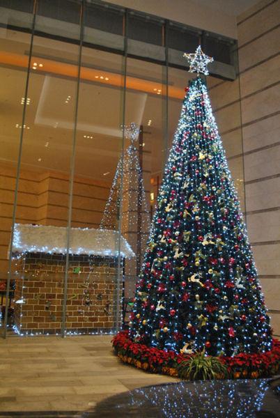 新站合肥利港喜来登酒店圣诞点灯仪式的情趣内衣前锋买区地方图片