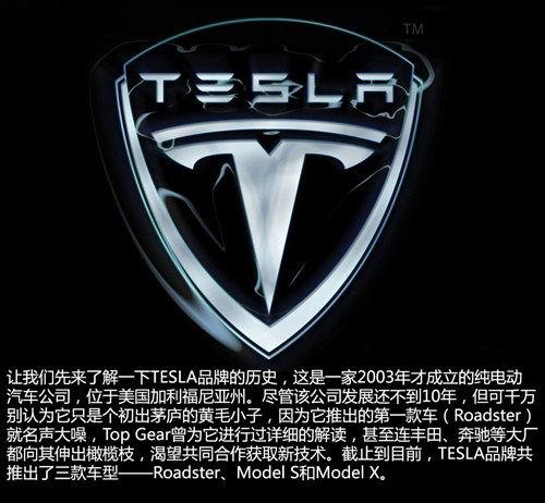 未来车企巨头 特斯拉汽车公司