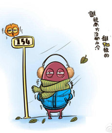 南方的冷是骨子里的冷,真冷!