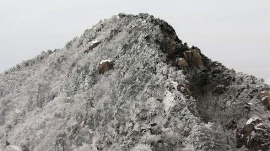 九华山雪景