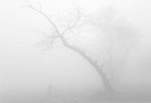 """气象专家为雾""""正名"""" 雾是雾霾是霾"""