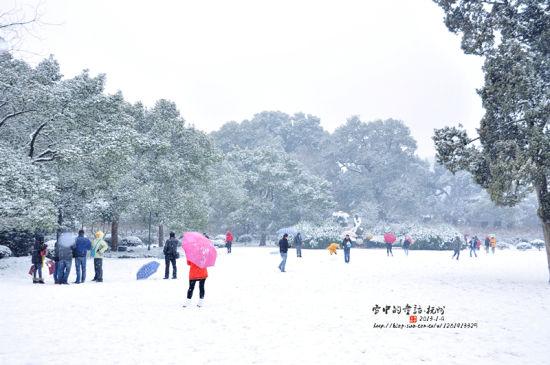 杭州 摄影:仰望天空40
