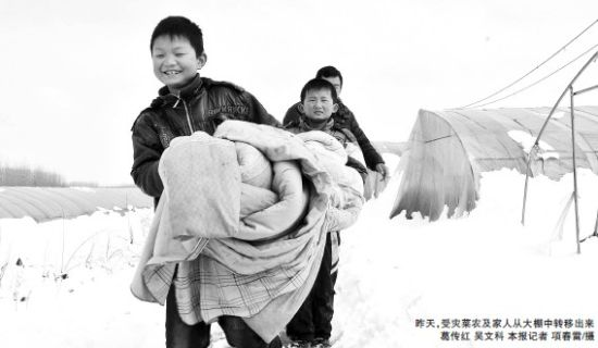 昨天,受灾菜农及家人从大棚中转移出来葛传红吴文科。记者项春雷/摄
