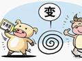 【第53期】猪肉如何大变身牛肉