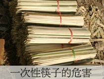 一次性筷子的危害