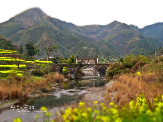 小桥如同画中的微缩景观