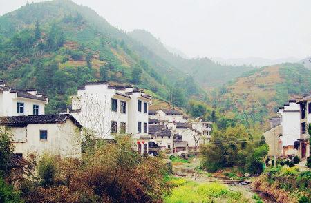 生产黄山毛峰的漕溪村