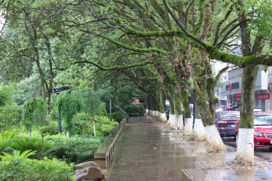 泰宁雨后的街头