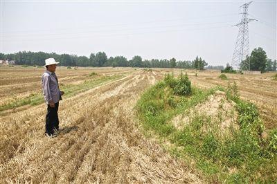 6月4日,安徽颍上县新集镇下湾村。刘永凯站在妻子坟前。