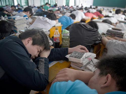 资料图片:毛坦厂中学高三年级的一个班内,学生们正在午休(5月23日摄)。新华社记者郭晨摄