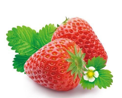 各种水果图片可爱