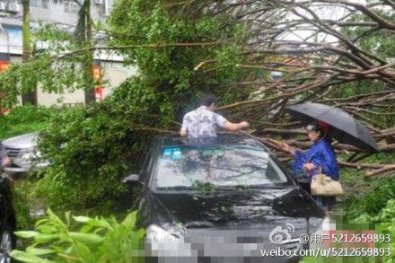 台风威马逊致文昌一人死 四名干部救灾失踪