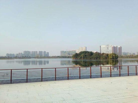 冬天里的南艳湖 陶迎春