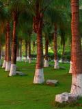 三亚西岛 最适宜度假的海上乐园