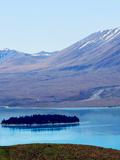 新西兰环岛蜜月