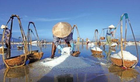 盐的暴利:生产到销售翻十几倍