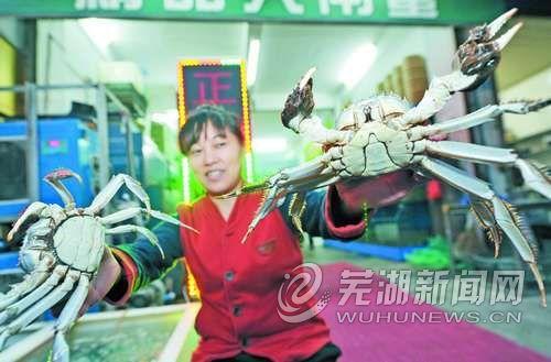 """芜湖螃蟹为何""""横""""不起来"""