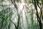 皇甫山国家森林公园