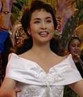 彭丽媛28年经典造型