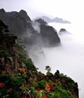 寻找黄山秋天的美景
