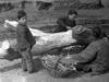1942年大饥荒